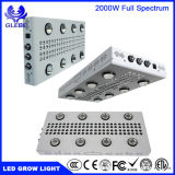 Noahs Series LED Grow Lamp COB LED Grow Light 2000W Full Spectrum