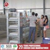 10, 000 Huhn-Vogel-Rahmen verwendet für Nigeria-Sambia-Bauernhof (A-3L90)
