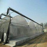 植わることのためのマルチスパンのフィルムの温室
