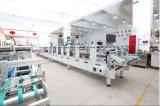 La meilleure machine économique de fabrication de cartons de l'animal familier pp de PVC