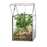 Handgemachte Luft-Pflanzendekorationglasterrarium-Kerze-Halter