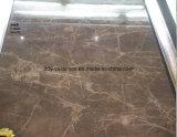 Плитка мрамора тела строительного материала супер лоснистая полная