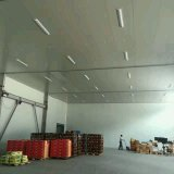 Gemüsekühlhaus-Raum gekühltes Gerät