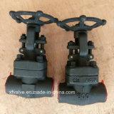 800lb/1500lb/2500lb forjou a válvula de porta de aço da extremidade da linha A105