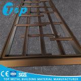 Nueva el panel tallado del diseño madera para la pantalla decorativa de aluminio