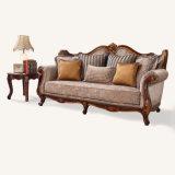 Il sofà classico del tessuto ha impostato con il blocco per grafici di legno antico per la casa