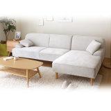 أسلوب [نورديك] يعيش غرفة ركب بناء أريكة
