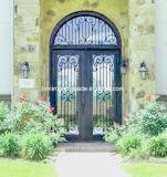 Дверь входа ковки чугуна конструкции обеспеченностью шикарная с транцем