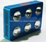 1000W Veg/Blüten-schaltbarer voller Spektrum PFEILER LED wachsen Lichter