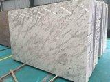 Polished зеленая мраморный стена кроет плитки черепицей гранита Sri Lanka плиток Lanka