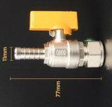 Valvole a gas d'ottone del tubo flessibile diritto