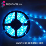 Brightness normale 3528 IP20 variopinti Flexible LED Strip con CE RoHS