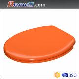 Produit orange de toilettes de norme européenne