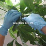 Рассмотрение напудренное нитрилом устранимых перчаток Gloves-5911