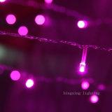 党結婚式のホーム庭の木の装飾のための2m*2m LEDの球根のクリスマスのネットライト