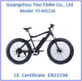 500W 모터를 가진 MTB 뚱뚱한 타이어 전기 자전거 Ebike