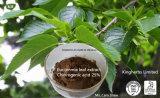 Het Uittreksel van het Blad van Eucommia, Chlorogenic Zuur 5%, 98% door HPLC