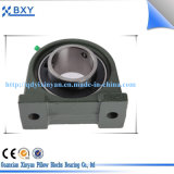 Unidades del soporte/del borde del cojinete de la marca de fábrica del rodamiento de China Bxy/rodamiento del bloque de almohadilla