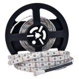 Bianco 4 del nastro 12V RGB+White/Warm della striscia 5050 di RGBW LED in 1 indicatore luminoso flessibile del chip 60LEDs/M LED
