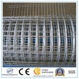 Anzeigeinstrument 10 galvanisierte geschweißtes Maschendraht-Zaun-Panel