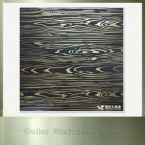 304 a repéré la plaque d'acier inoxydable de couleur pour la décoration de porte d'ascenseur