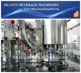 Het Vullen van het Bier van de Fles van het glas Machine (bgf16-12-6)