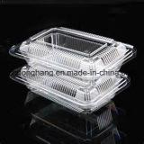 Bandeja/envase plásticos que forma la máquina (DHBGJ-480L)
