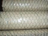 Fabbrica esagonale della rete metallica di Galvanized/PVC