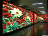 Sqm P4mm Indoor Curved LED Display di progetto 14.06 il HuNan