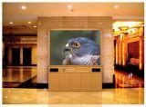 Skymax 1r1g1b dell'interno LED normale che fa pubblicità allo schermo