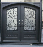Kickplateが付いている美しい機密保護の錬鉄の前ドア