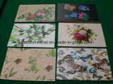 PVC Foam Panel di Digitahi Printing in Low Price
