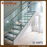 Escalera interior del vidrio del diseño moderno y madera (SJ-X1069)