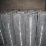 Il PVC ha ricoperto/rete metallica saldata galvanizzata