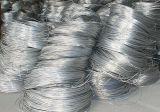 Steel inoxidable Welding Wire avec CCS, CE Certification