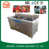 오존 발전기를 가진 오존 세탁기 및 야채 및 과일 세탁기 및 세탁기