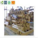 générateur d'énergie électrique du gaz 230V/400V naturel avec Cummins Engine