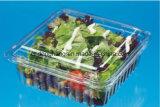 Conteneur de salade d'animal familier formant la machine