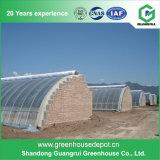 ベストセラーの野菜温室によって使用されるプラスチックフィルムの温室