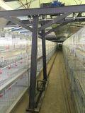 Projeto novo da gaiola galvanizada das aves domésticas da grelha