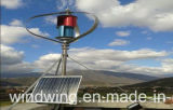 1000W 고능률 자석 바람 발전기 터빈