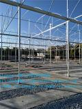 La serra del traforo della pellicola di Caldo-Vendita per il giardino delle piante dei fiori & degli ortaggi coltiva la tenda
