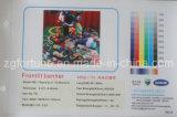 Bandeira 440g 500D*500D/18*12 do cabo flexível do PVC