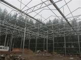 Frame de aço galvanizado para a estufa da fábrica de China