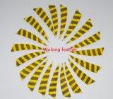 3 بوصة [ستريت] [ريغت وينغ] درع ريش لأنّ رماية لون مزدوجة [برّ]