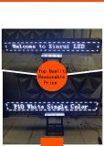 Einzelne Baugruppen-Bildschirm-Text-Bildschirmanzeige des Weiß-P10 im Freien LED