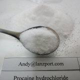 프로카인 HCl는 안전하게 관례에게 마취 약 프로카인 염산염을 통과한다