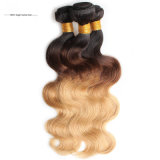 Manojos brasileños del pelo de la Virgen barata, pelo humano brasileño de la venta al por mayor