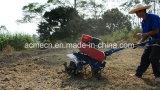 Honda 인도에 있는 소형 힘 타병 소형 회전하는 타병