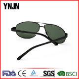 Les lunettes de soleil larges professionnelles de Mens de tempes de Ynjn stigmatisent vos propres (YJ-F8415)
